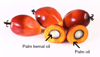 is palm fruit oil healthy dehydrated fruit